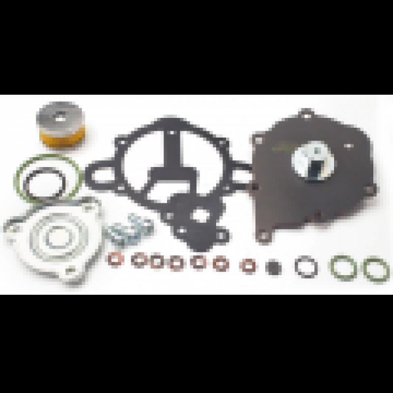 Ремонтный комплект для редуктора Tomasetto AT09 Artic (пропан) +фильтр